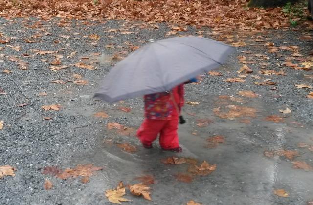 Rainy day in Istanbul