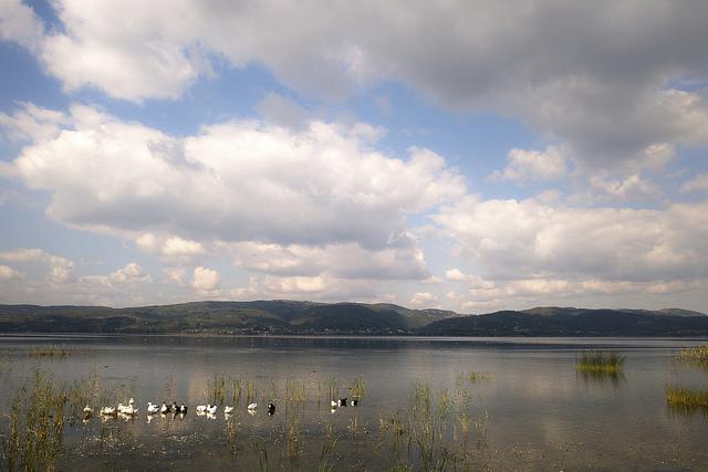 Day trip to Sapanca lake